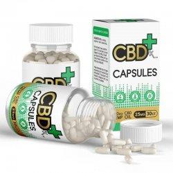 CBD Kapseln 25 mg (30 Stück / 50 g)